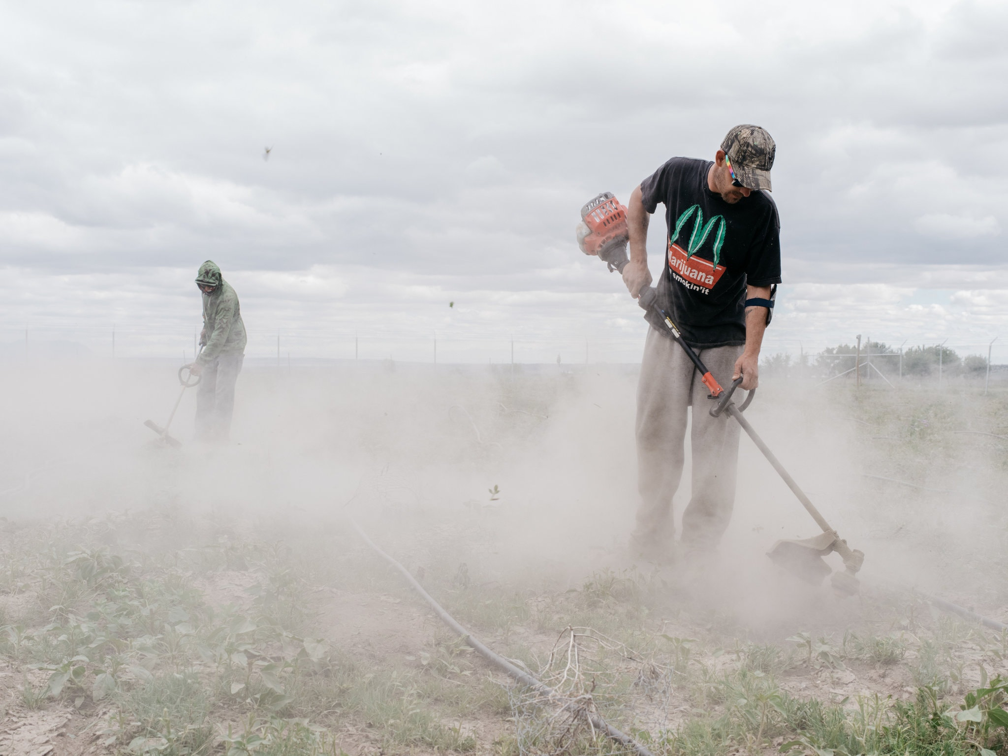 Workers prepared for marijuana planting on Woody Farms in Pueblo, Colo. The state's first-in-the-nation experiment with legalizing recreational marijuana put it on the front lines of changing America's drug laws.CreditCreditBenjamin Rasmussen for The New York Times