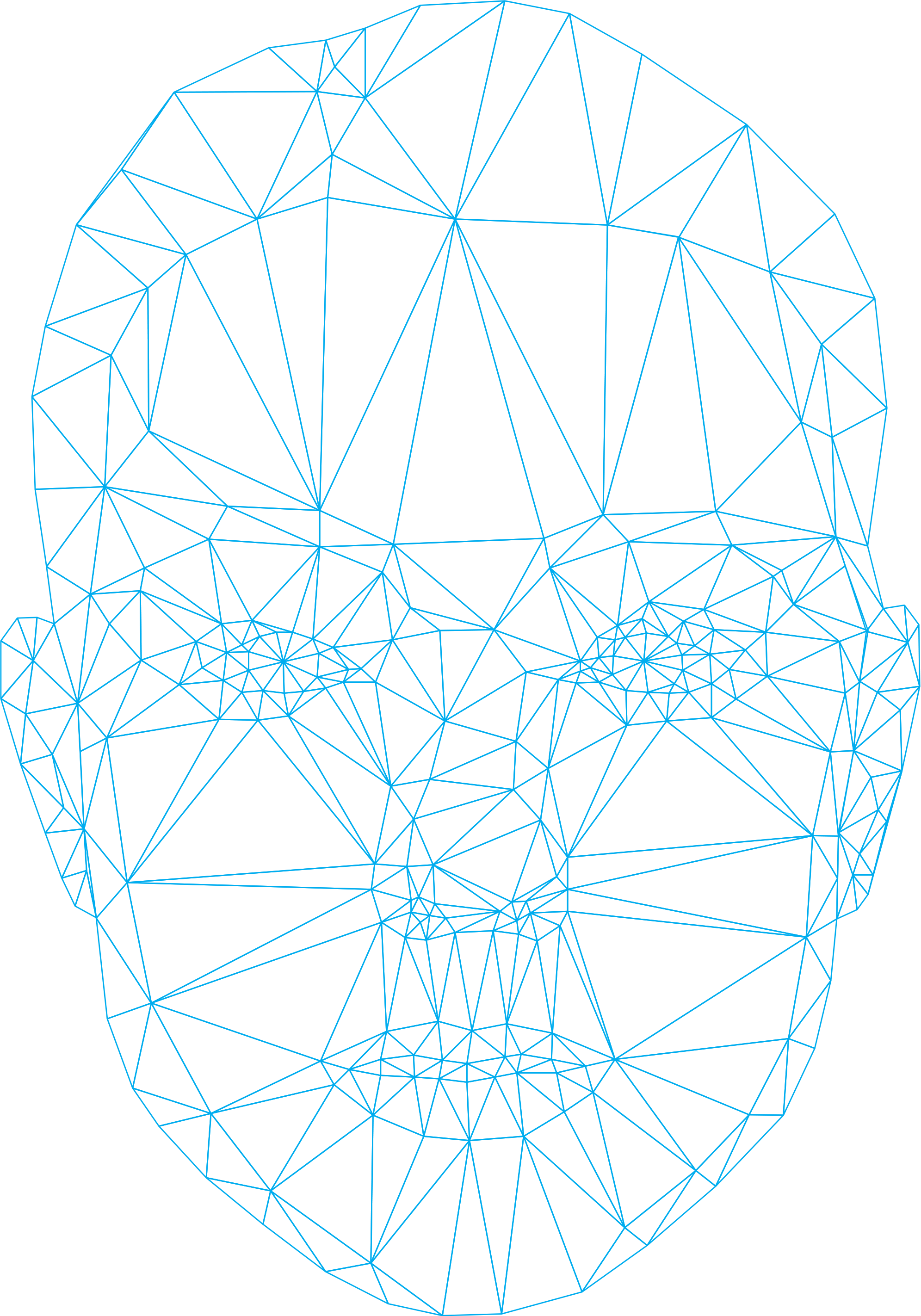 female-face-wireframe-6.png