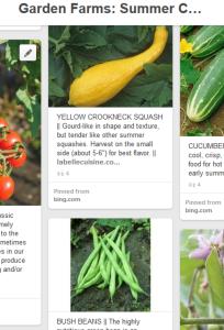 2015-05-13-summer-crops-204x300.png