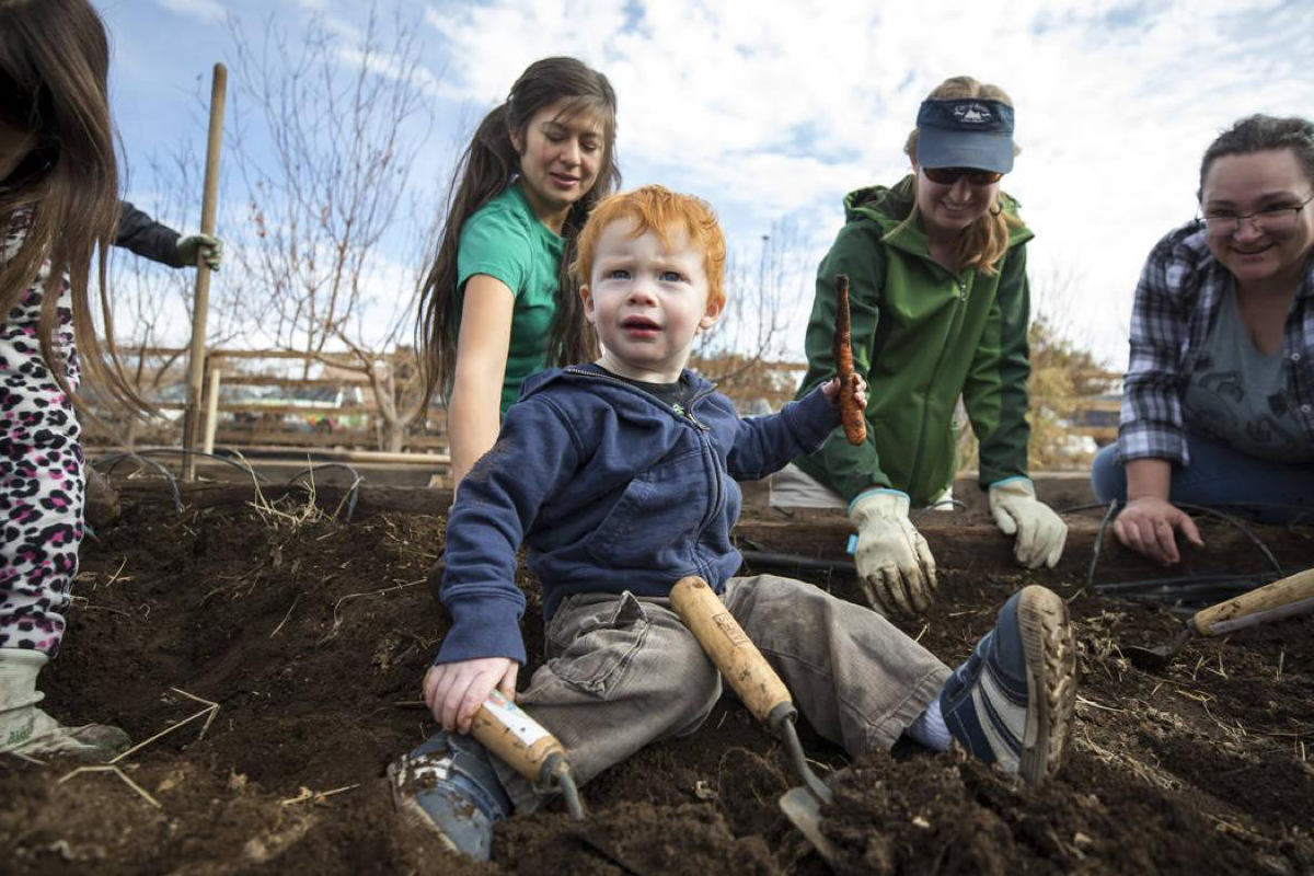 One-and-a-half-year-old Wyatt Floyd holds up a carrot dug up in a garden bed during a volunteering event at the San Miguel Community Garden located at 3939 Bradley Road in Las Vegas on Saturday, Jan. 12, 2019. Richard Brian Las Vegas Review-Journal @vegasphotograph