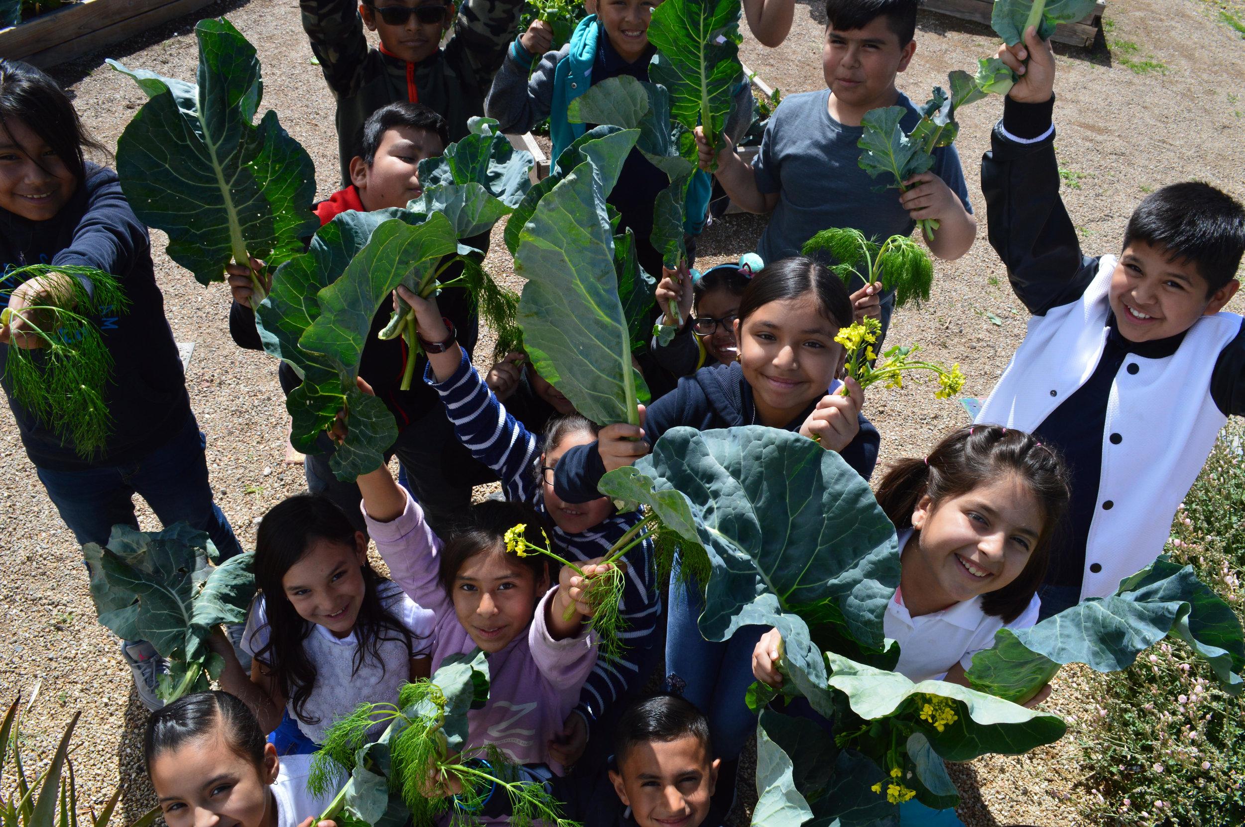 support school gardens -
