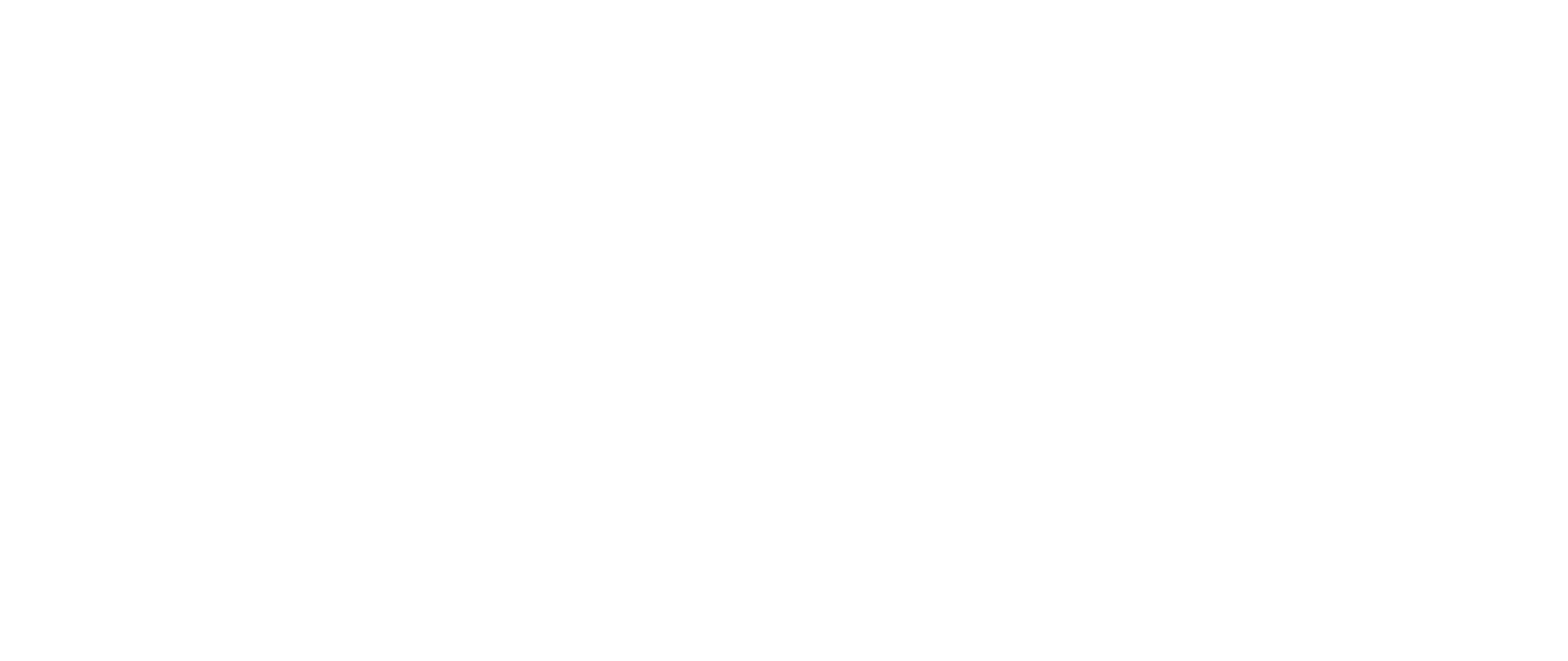 Bike Rehoming Tally Marks-01-01.png