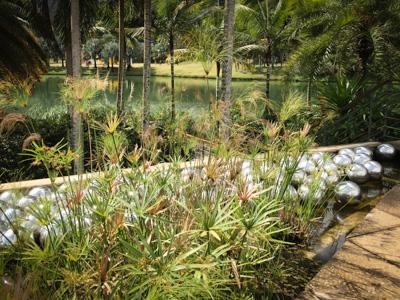 """Narcissus Garden"", Yayoy Kusama"
