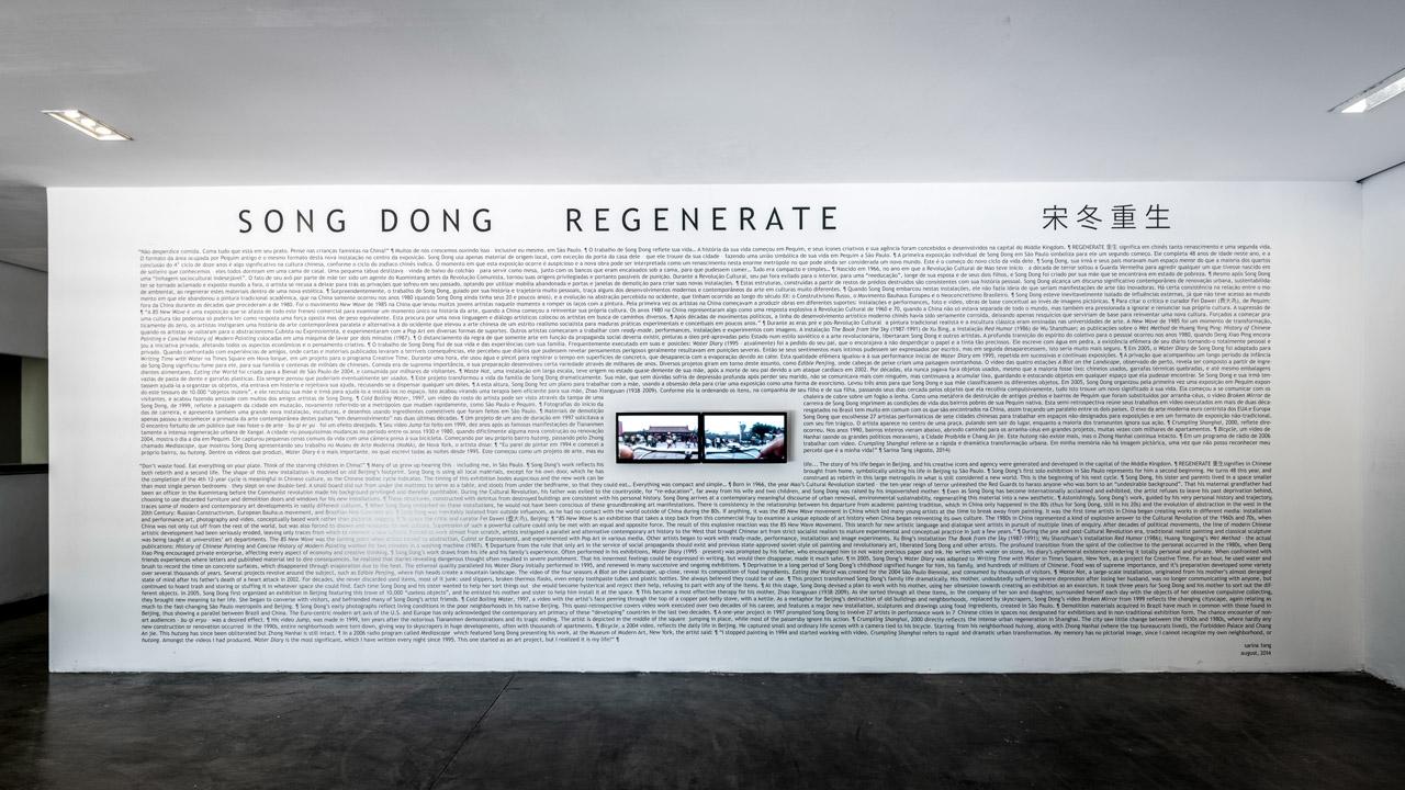 song-dong-1.jpg