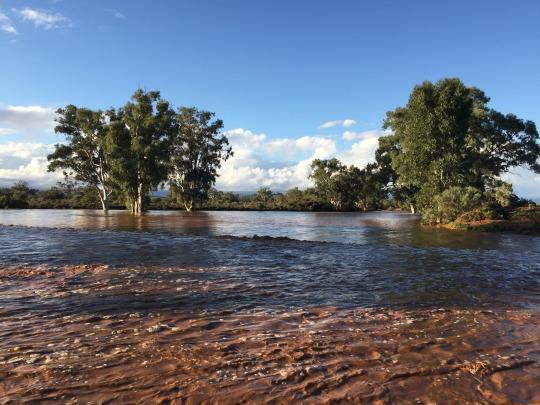 Wilpeanna Creek   in flood, 16/06/2015
