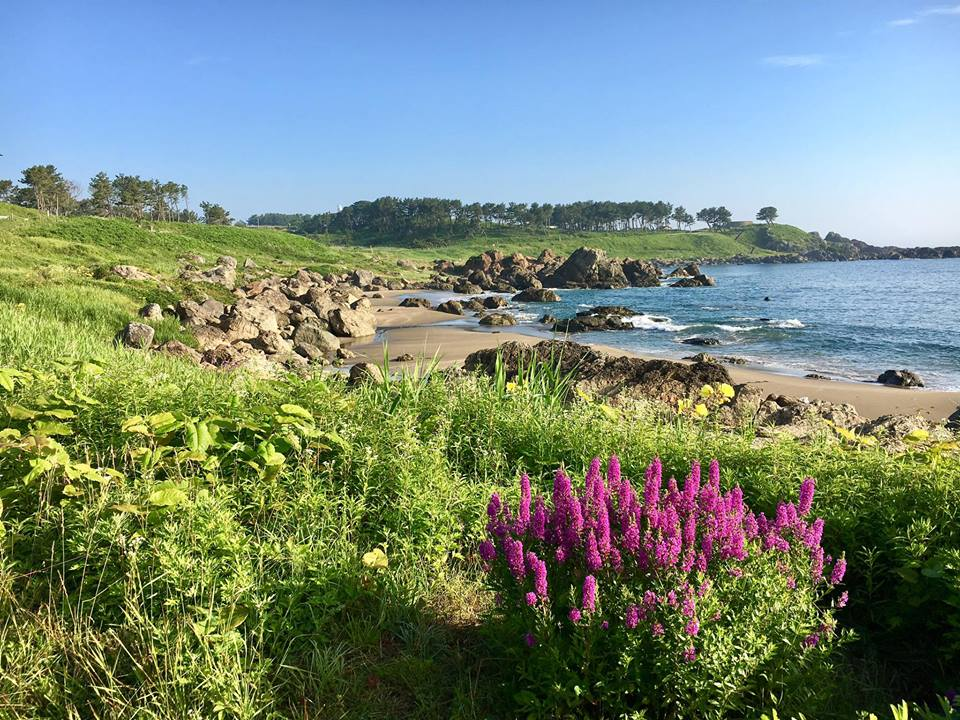 What is the Michinoku Coastal Trail? -