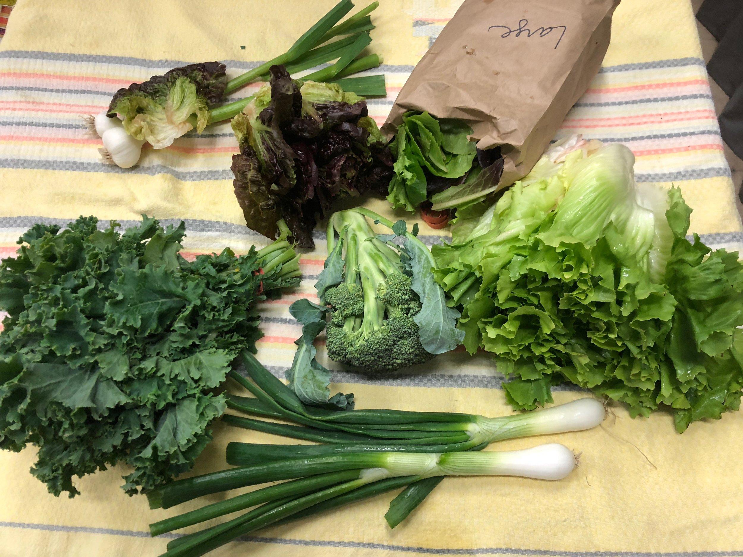 Medium Veggie Share