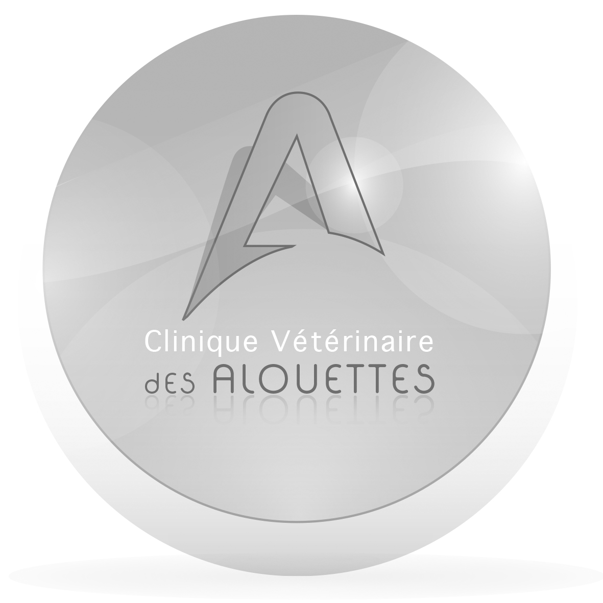 LOGO-ALOUETTES-Glossy-cmjn.png