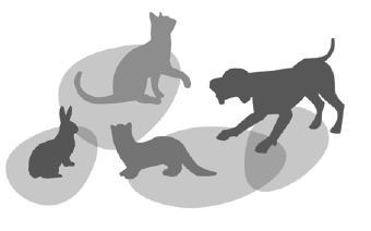 Clinique-vétérinaire-Batignolles-Epinettes.png