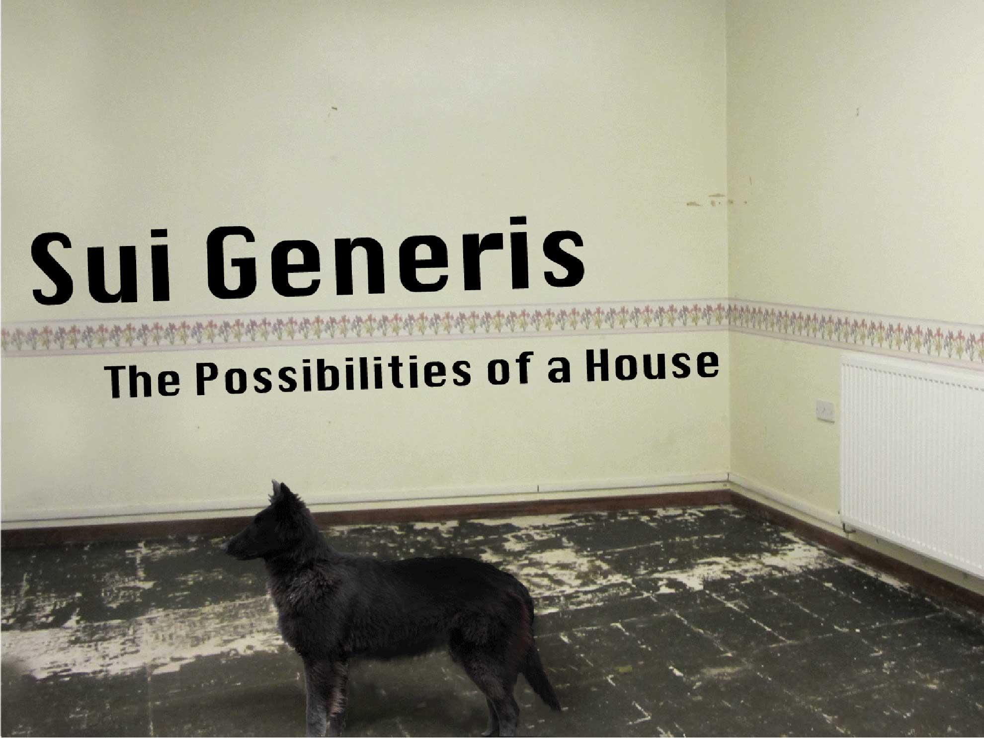 sui_generis_2.jpg