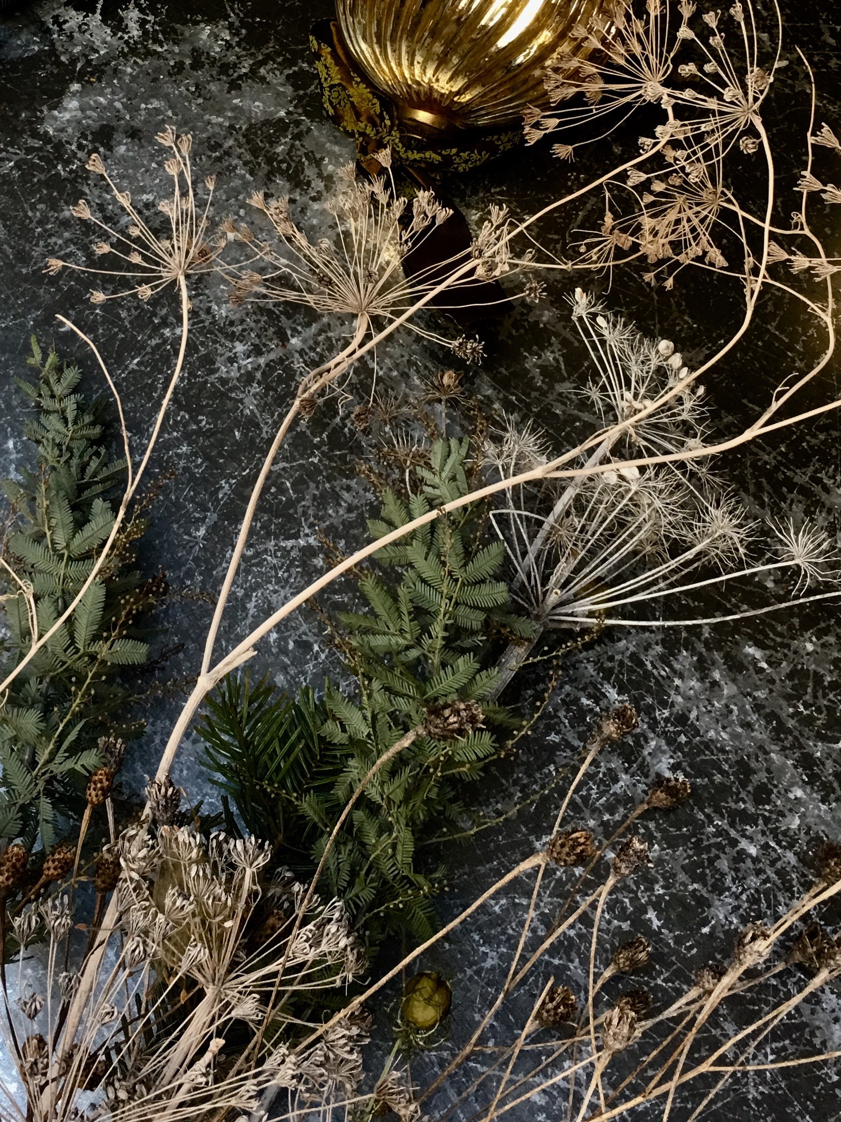 Photographer: Alex Parnell  Location: Wilderness Reserve