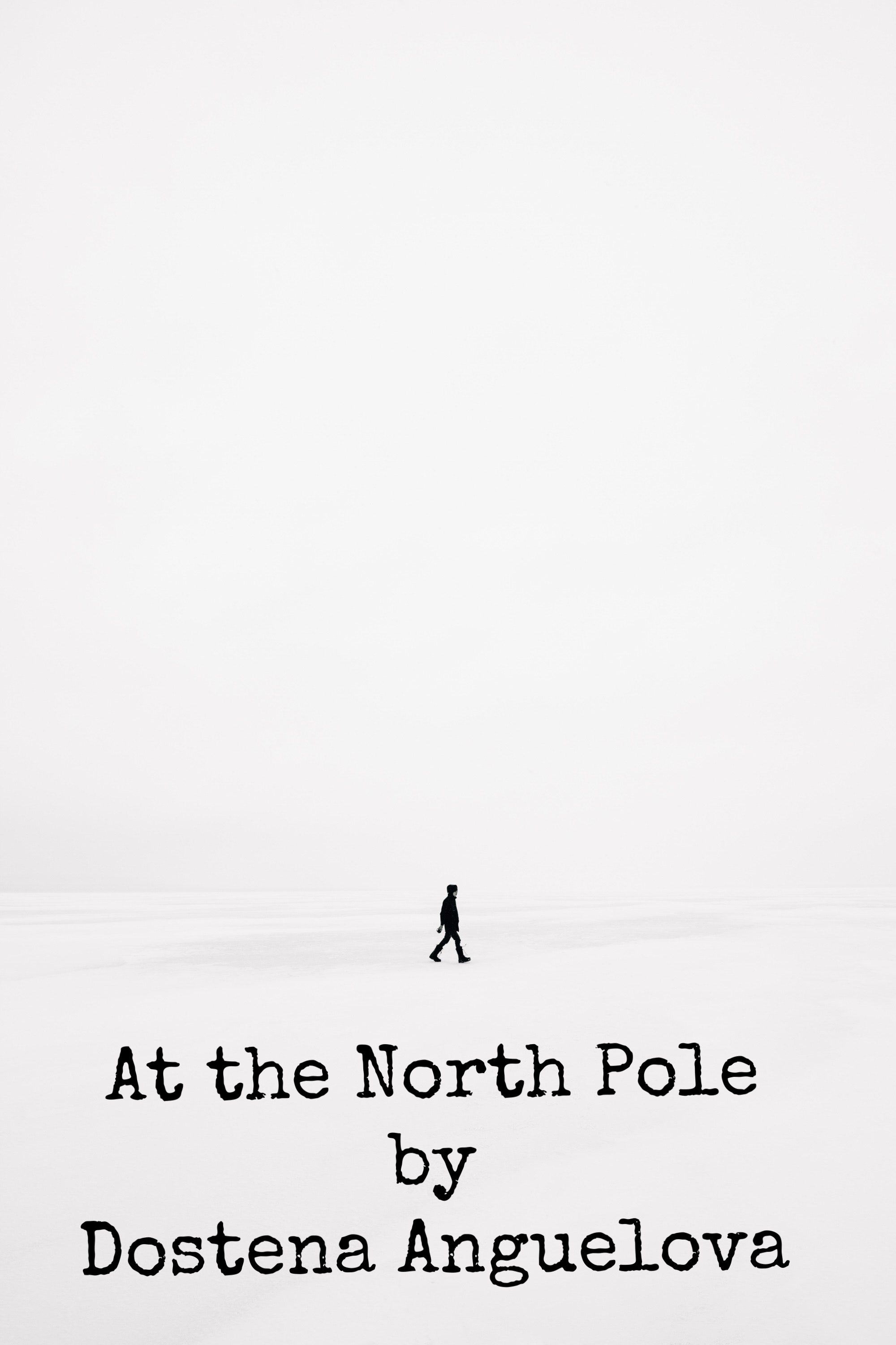 At the North Pole