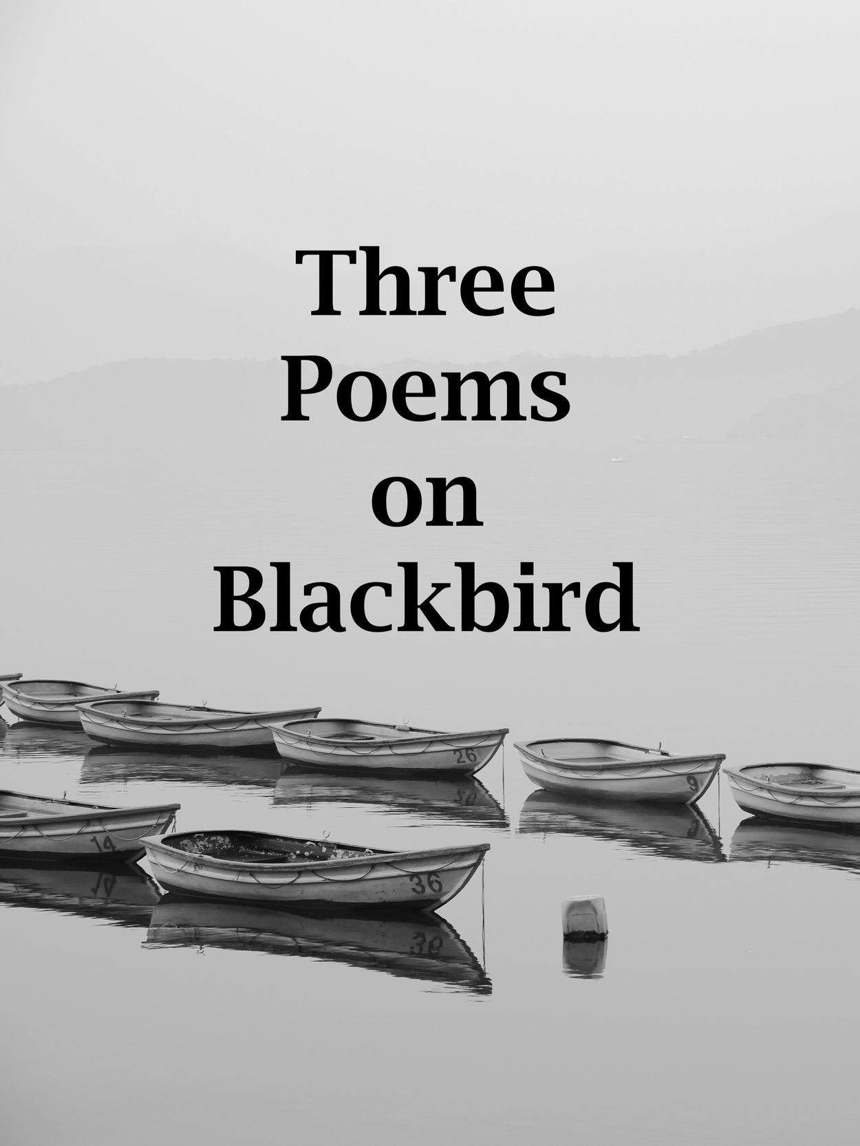 Three Poems on Blackbird