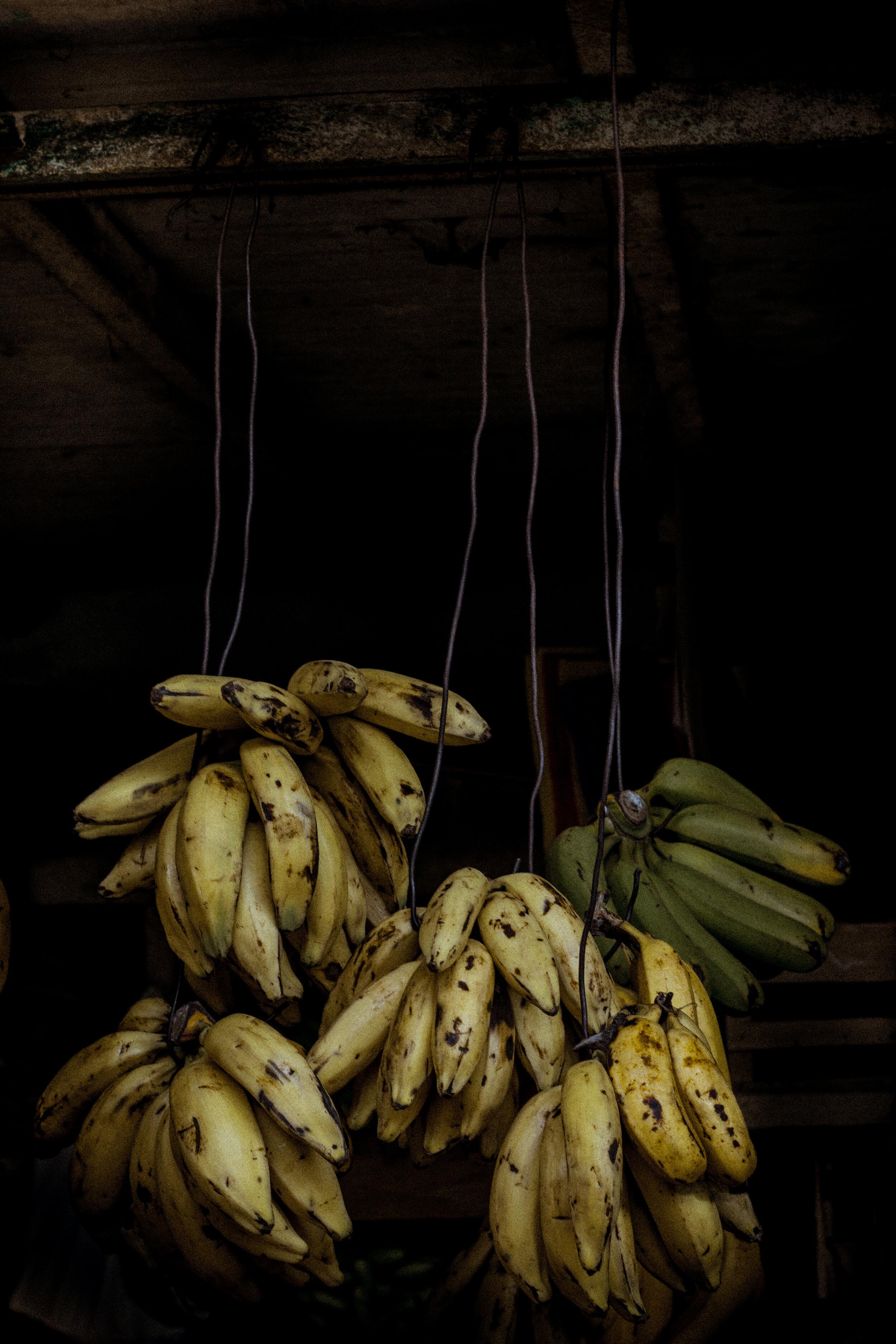 Still bananas. Perú. 2016