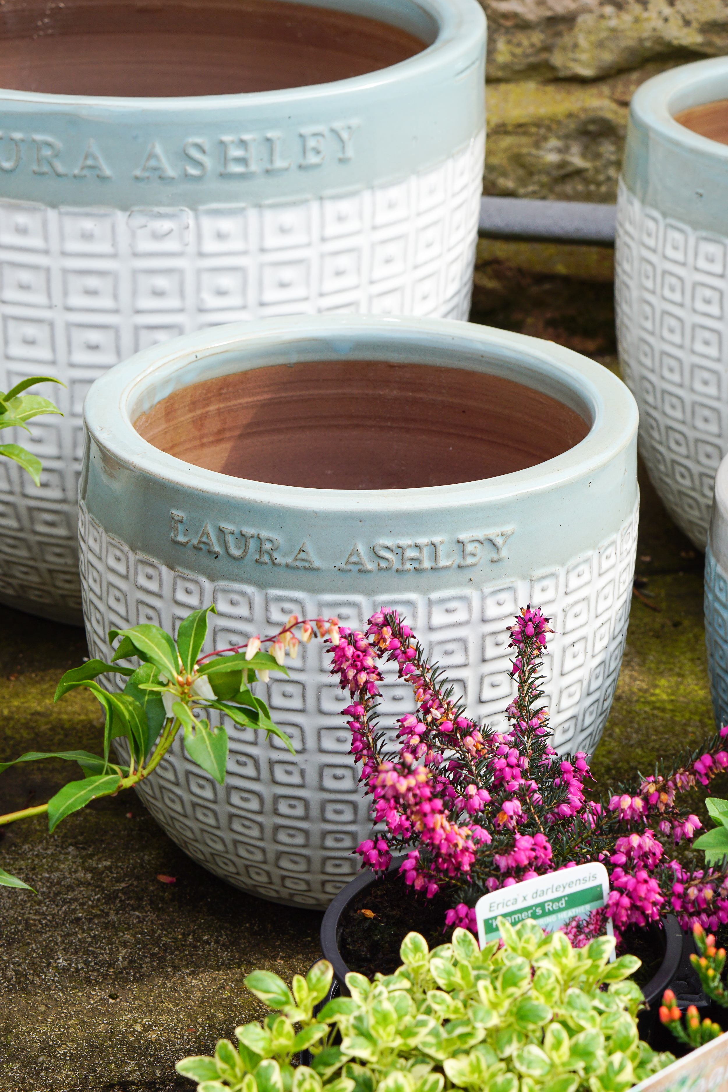Planting in pots