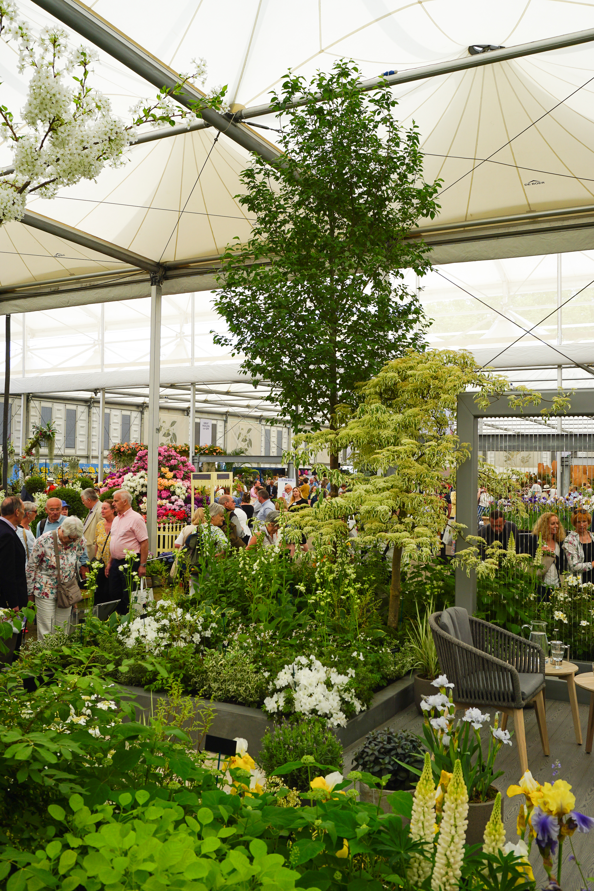 My first ever RHS Chelsea Flower Show