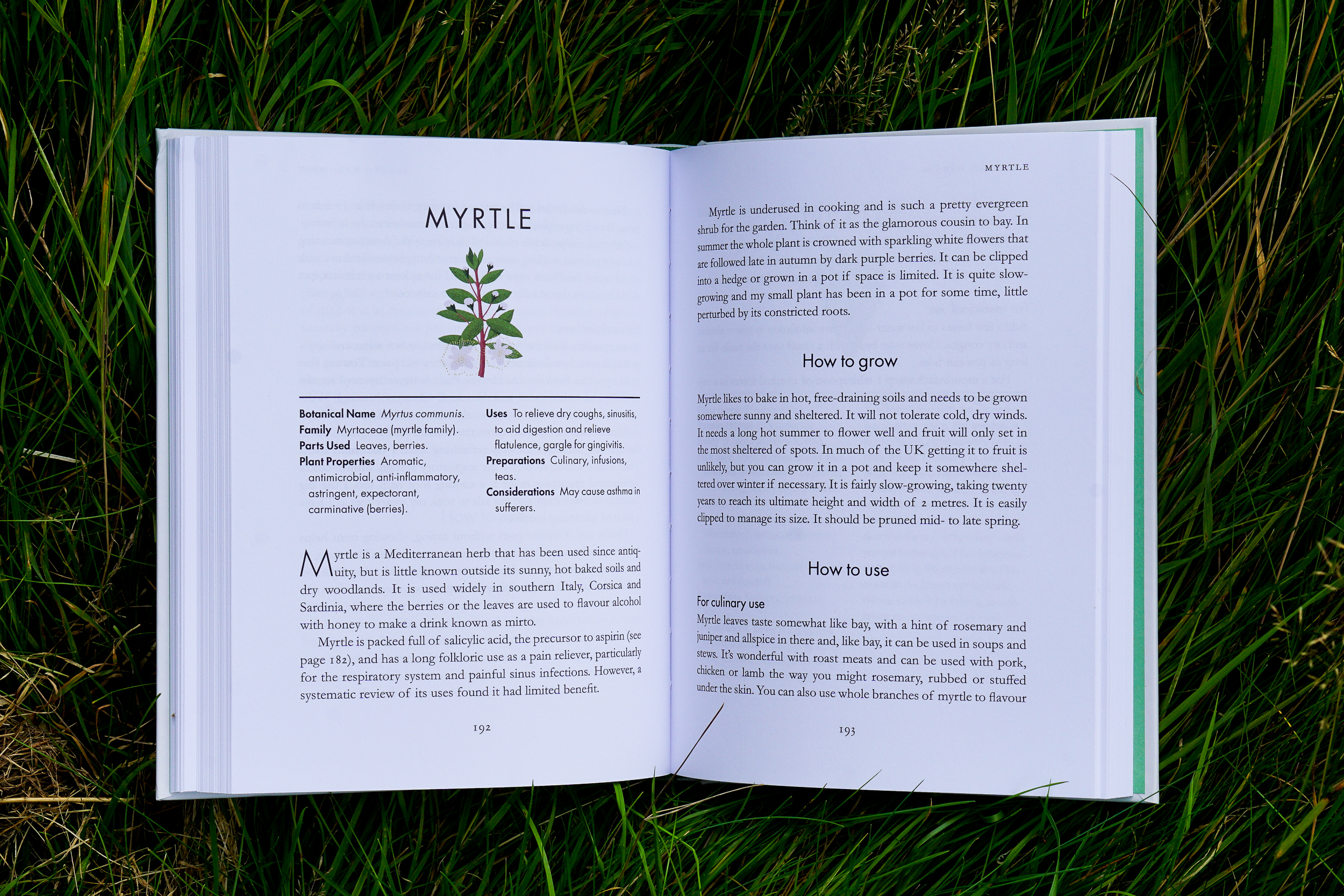 A Modern Herbal book review