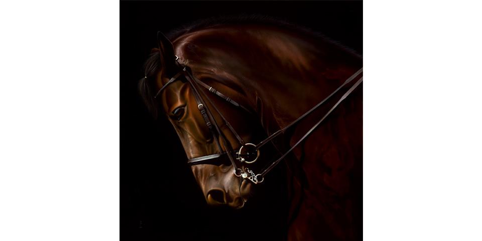 Equus Royale.jpg
