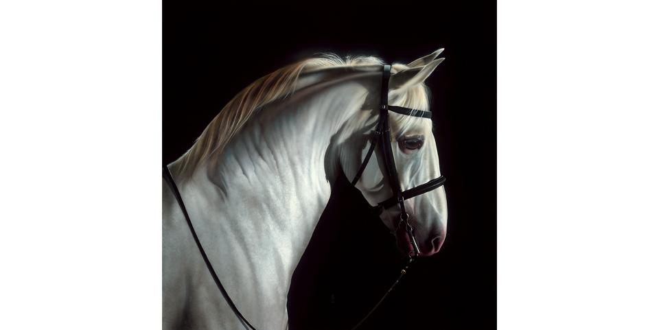 Equus Blanco Real.jpg