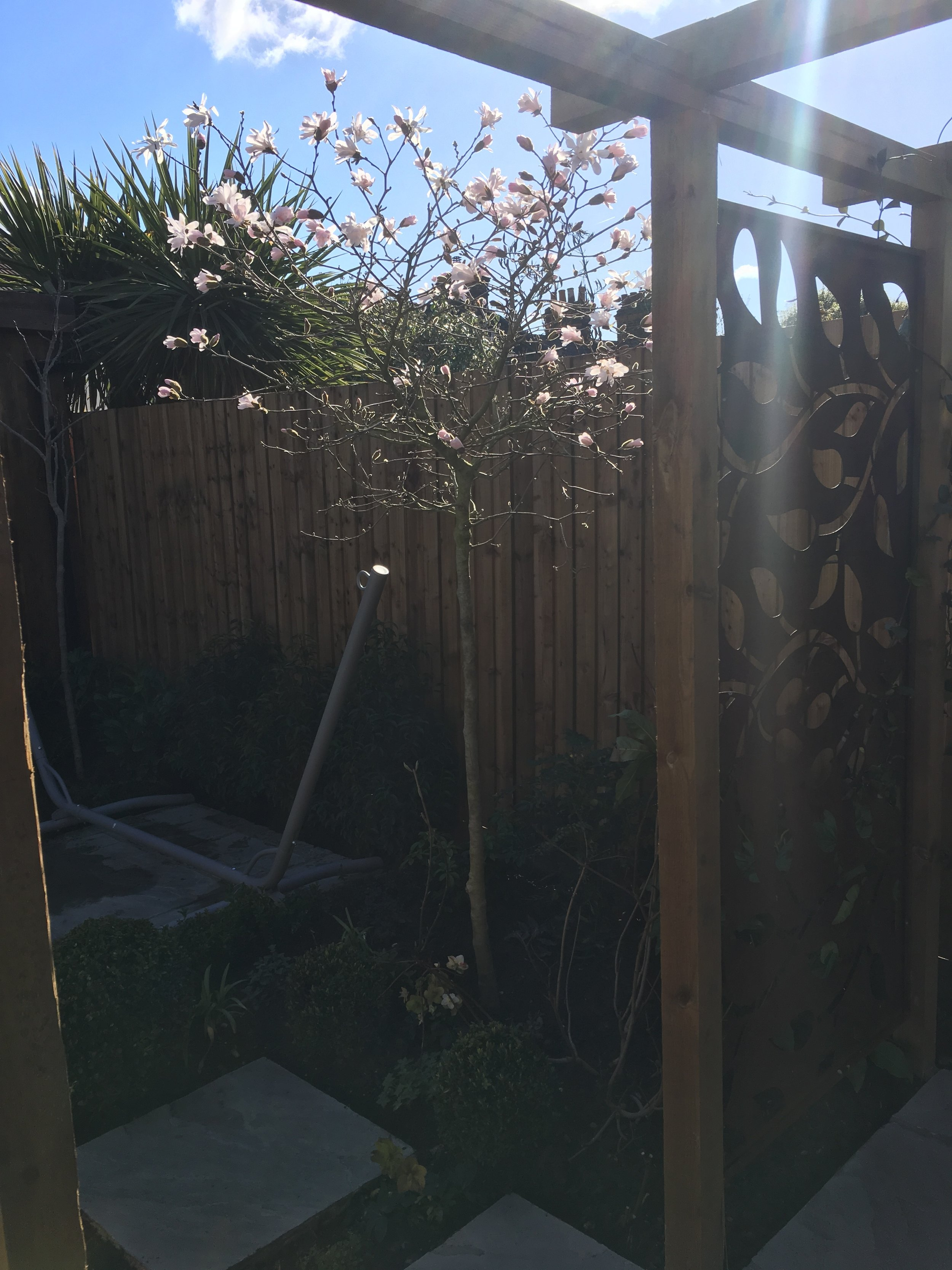 Wooden arbor with metal screen