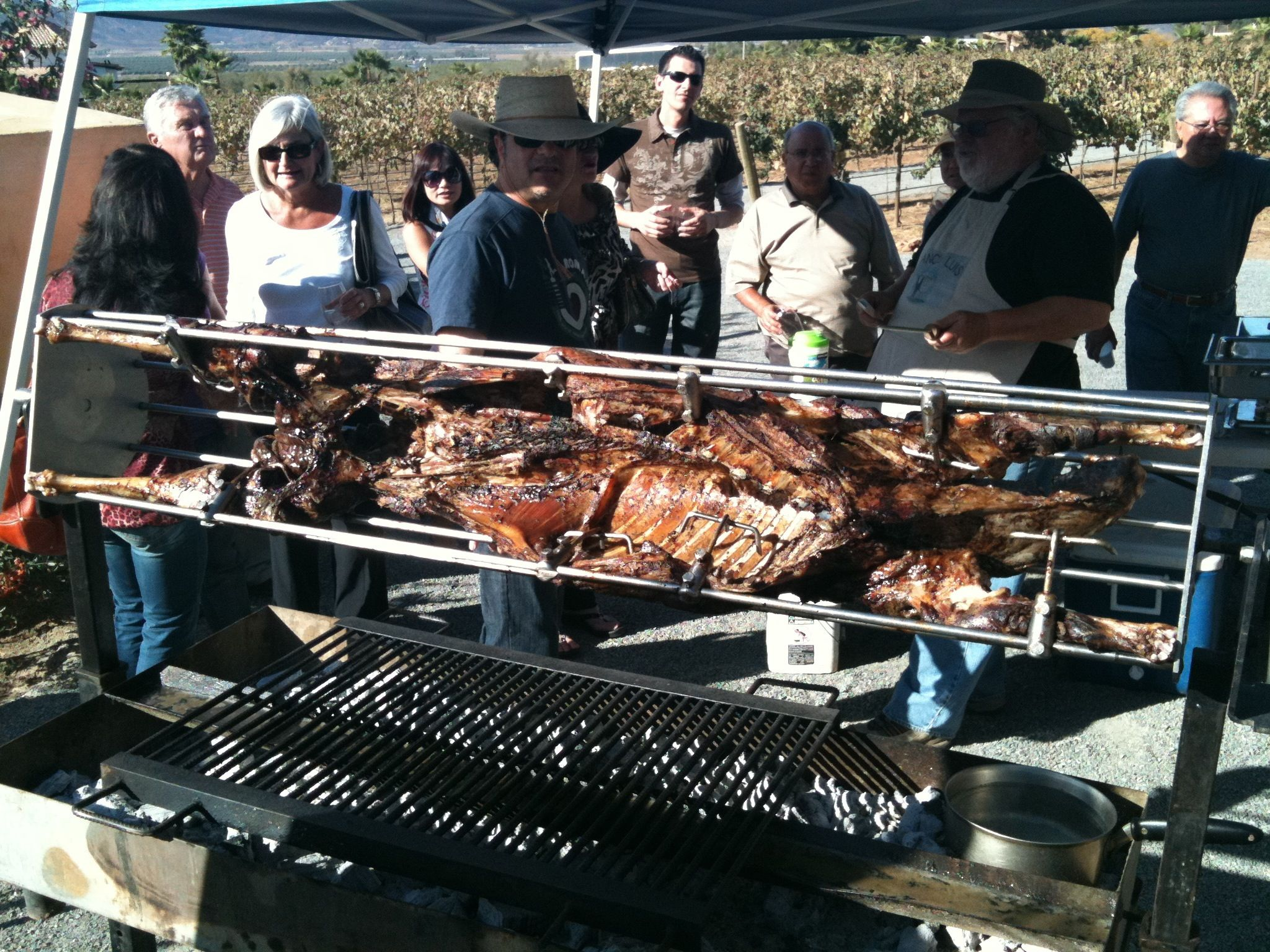 Whole roast lamb on the spit for lunch at Lechuza Vineyards