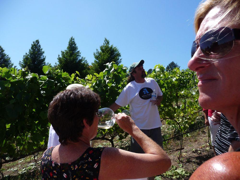 Vineyard trek with Martin Alfaro of Alfaro Vineyards