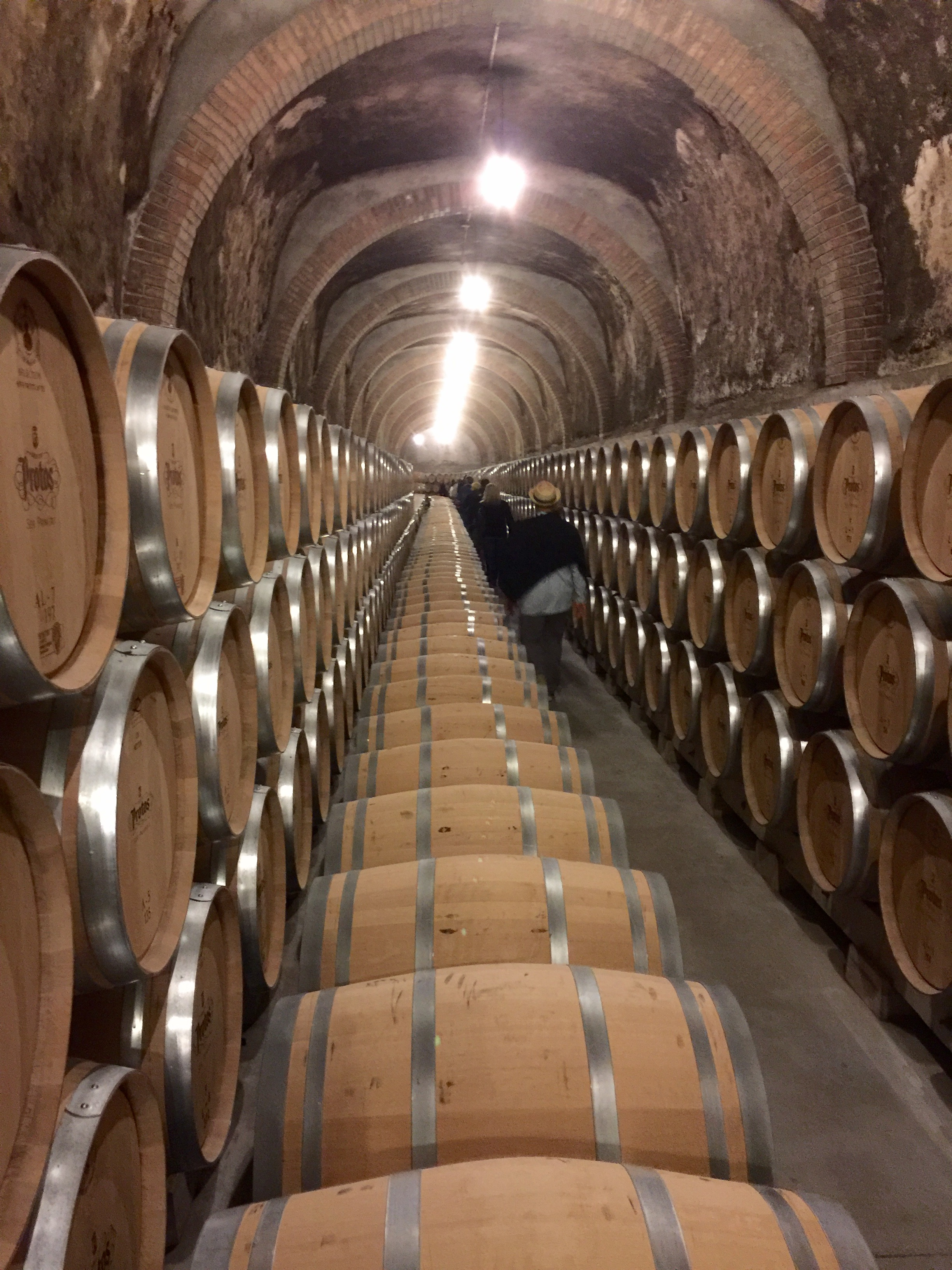At Protus Winery in Ribera del Duero walking through over a mile of caves underneath Castle Penafiel.