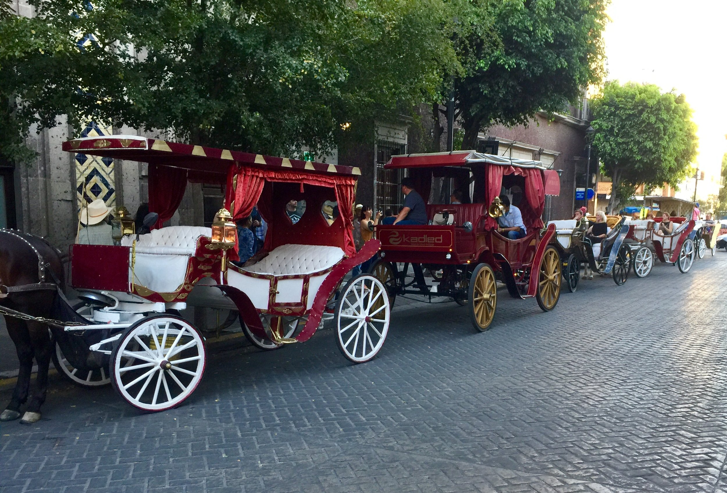 Horse drawn carriages lining up to take us on a tour of Guadalajara's central historical district.