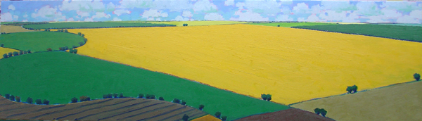 Deep & Wide, 2011, oil on canvas, 17 x 60