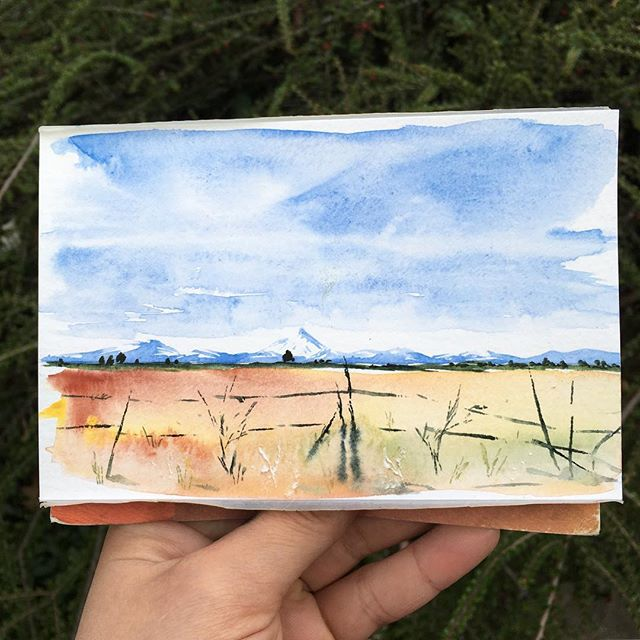 🌀 . . . . . . . . . . . . . #art #watercolor #watercolors #watercolour #watercolours #watercolourpainting #watercolorstudy #watercolorsketch #watercolorpainting #pleinair #pleinairpainting #landscape #landscapepainting #painting #holbein #windsornewton #artgram #artistsoninstagram #instaart #instaartist #artwork #artistsofinstagram #watercolorart  #oregon #exploreoregon #qorwatercolors #danielsmith #danielsmithwatercolors