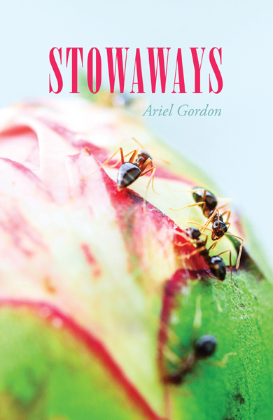 Published spring 2014 ISBN:9781926794181