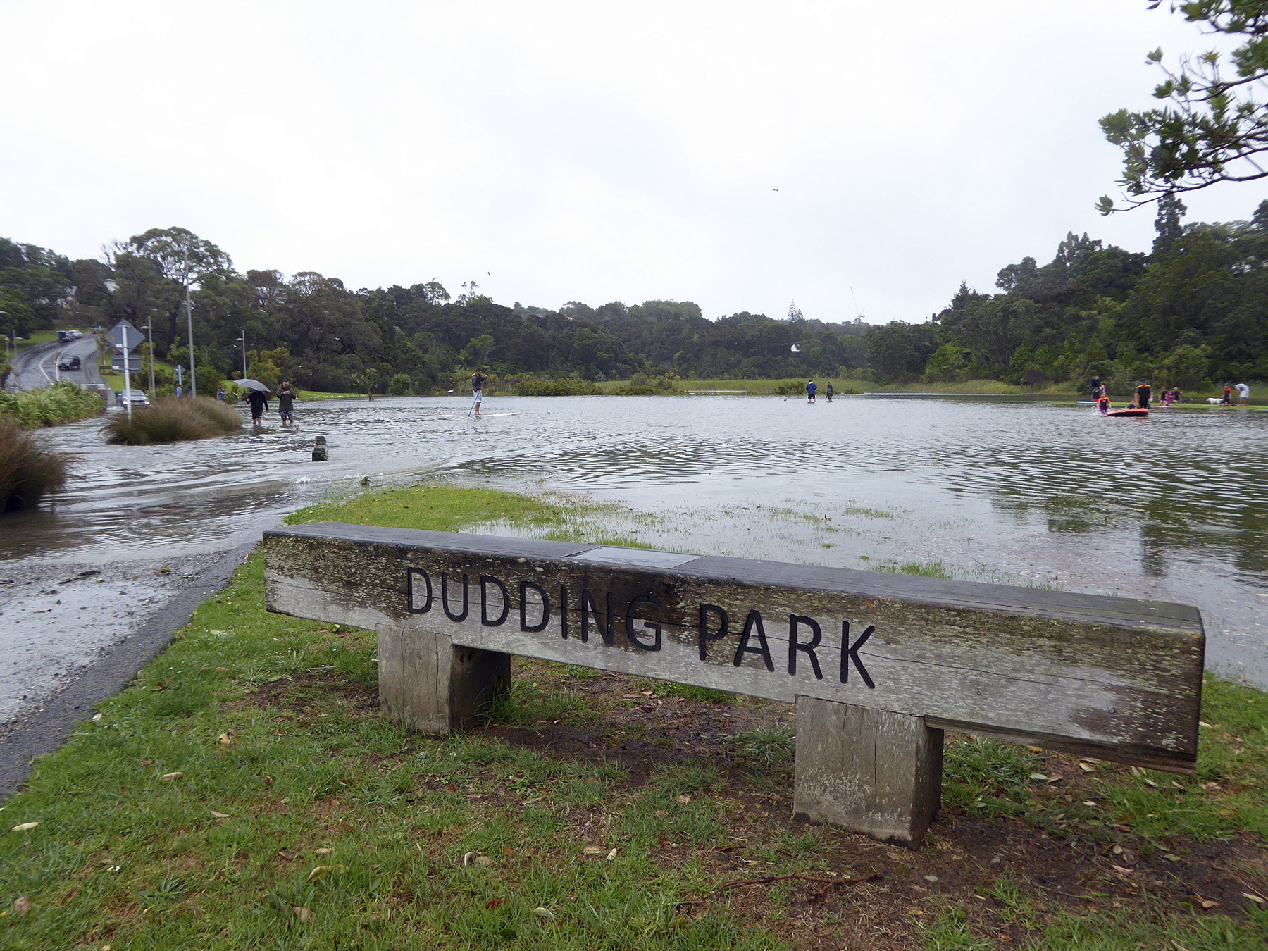 LSB-flooding-Dudding-Park-Jan-2018.jpg