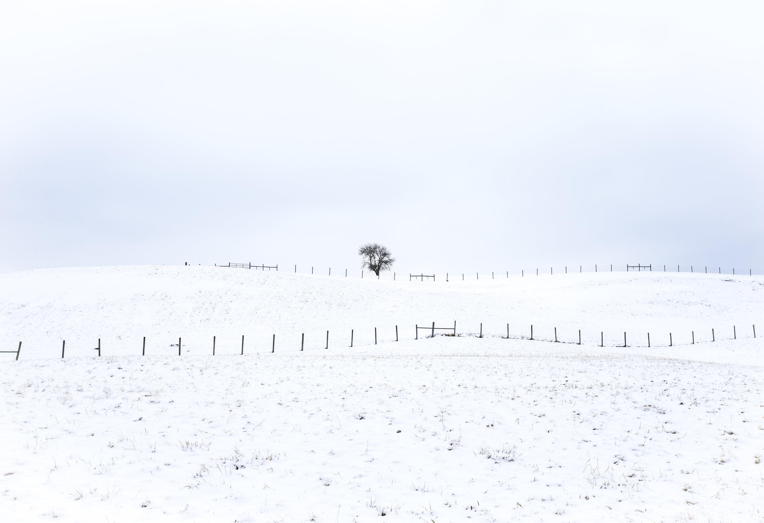 A Frozen Plum Orchard Lake near Pax, West Virginia.jpg