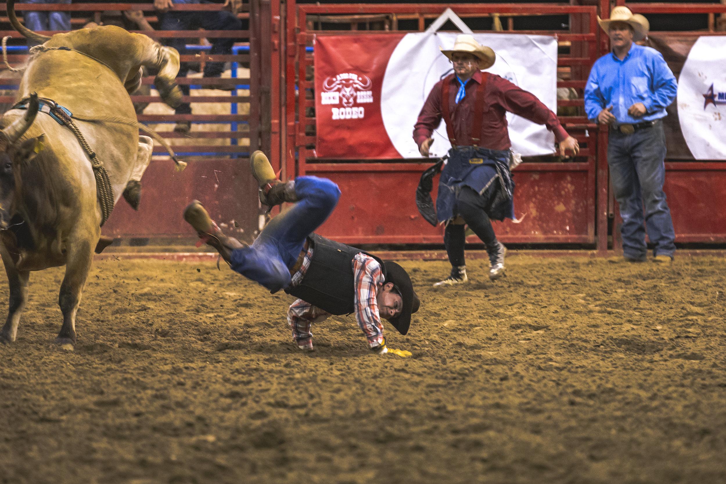atco-rodeo-31.jpg