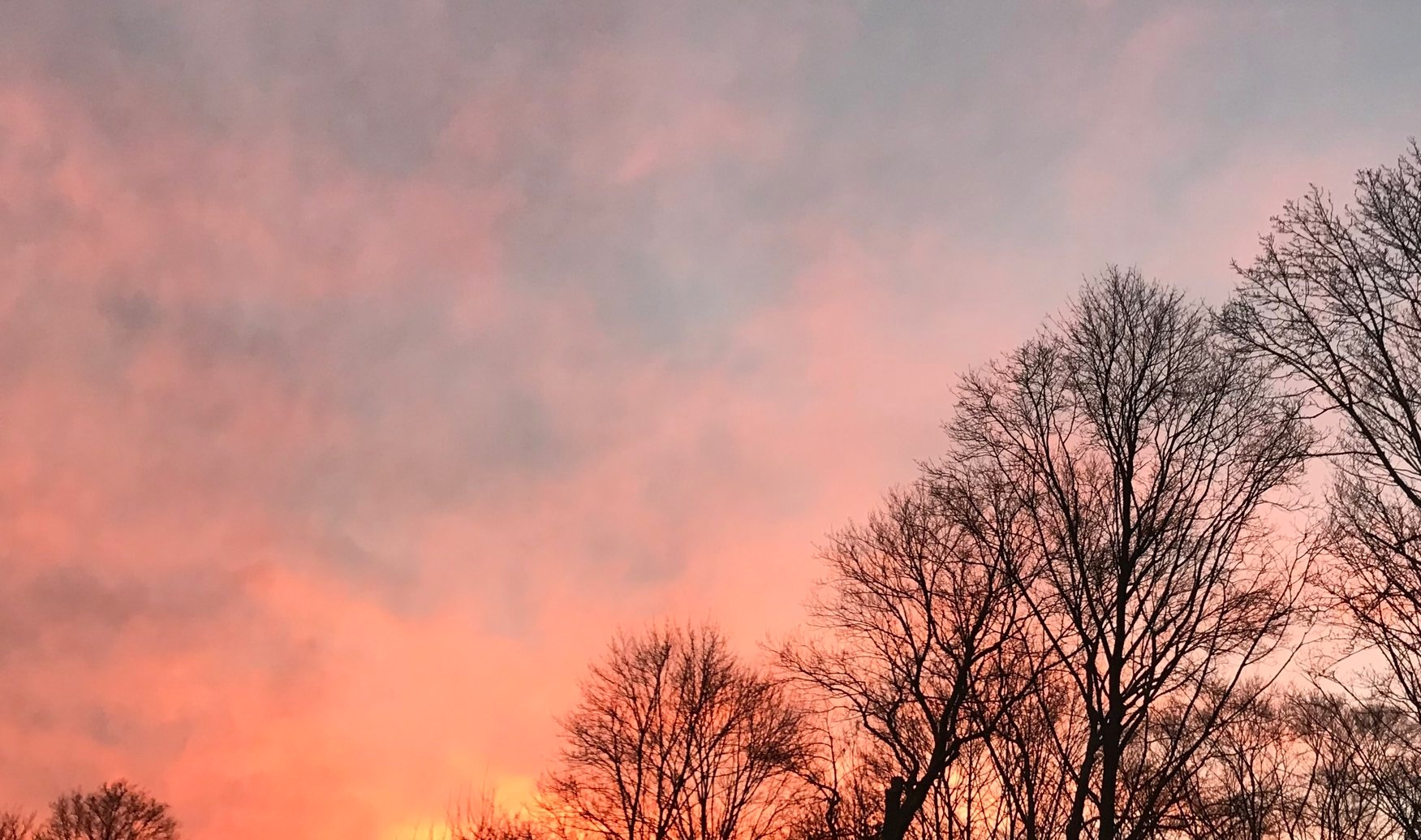 winter+sunset+copy1.jpg