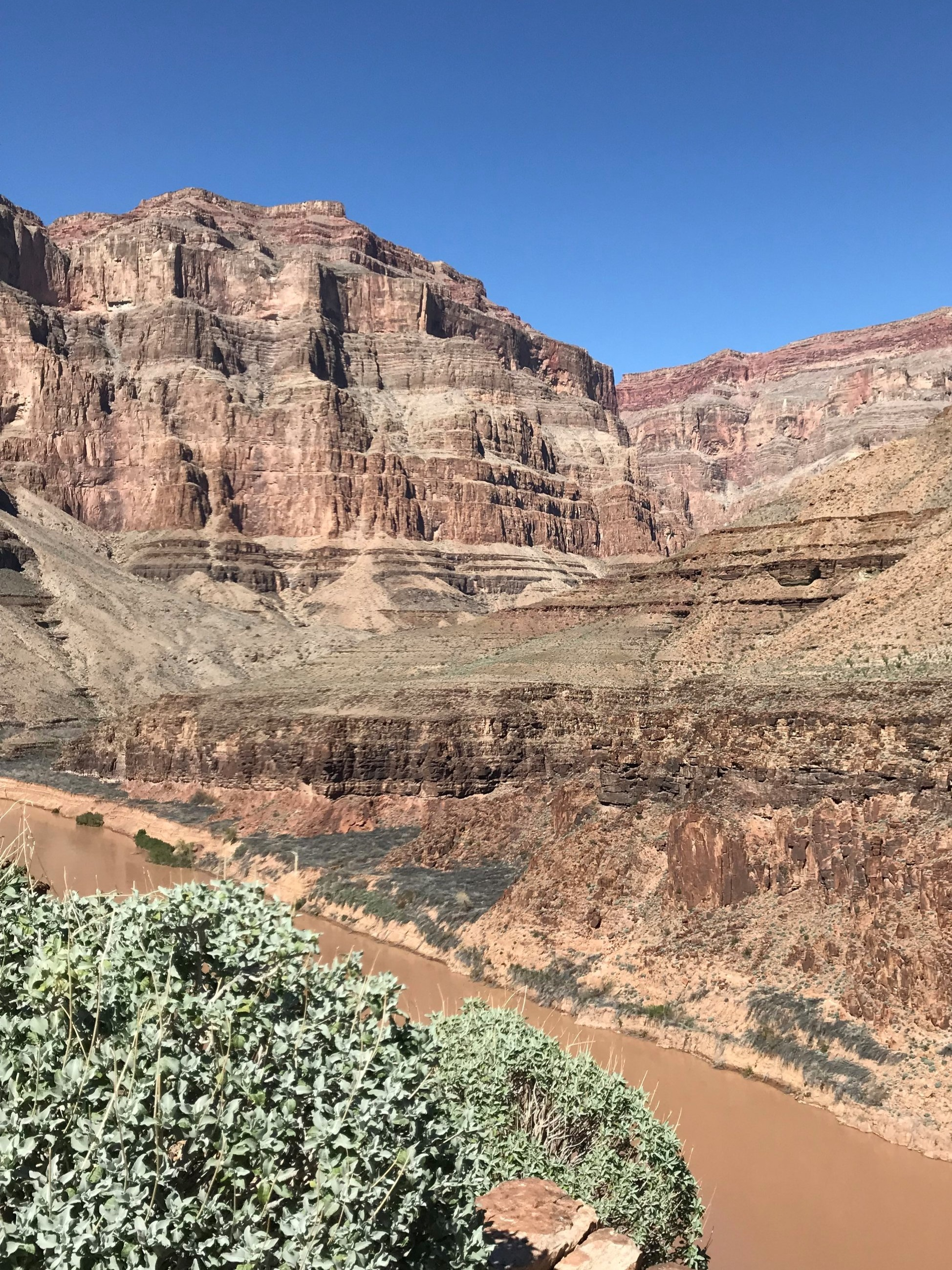 grand+canyon.jpg
