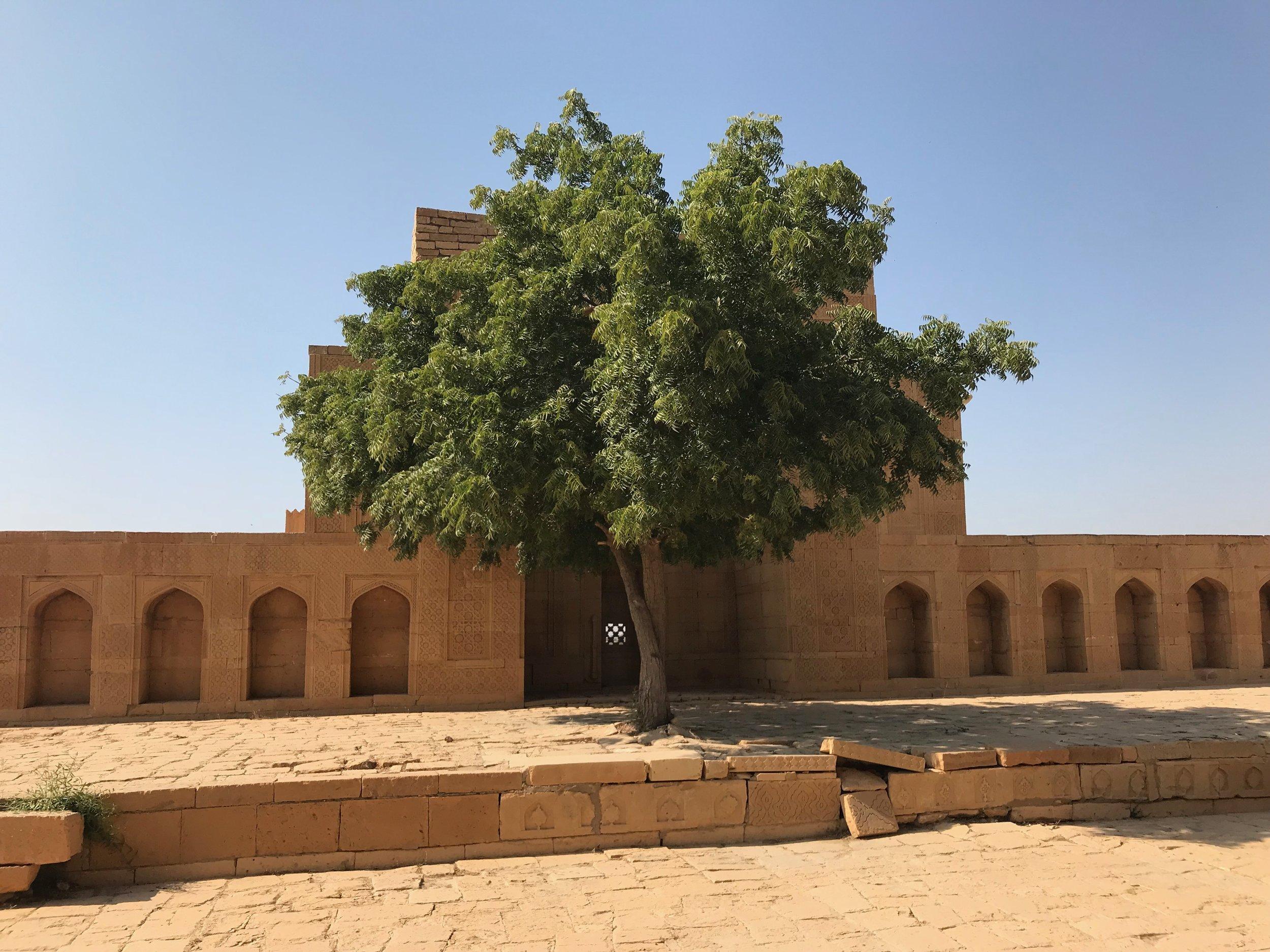 Photo credit: Makli World Heritage Site @ Siavash Laghai