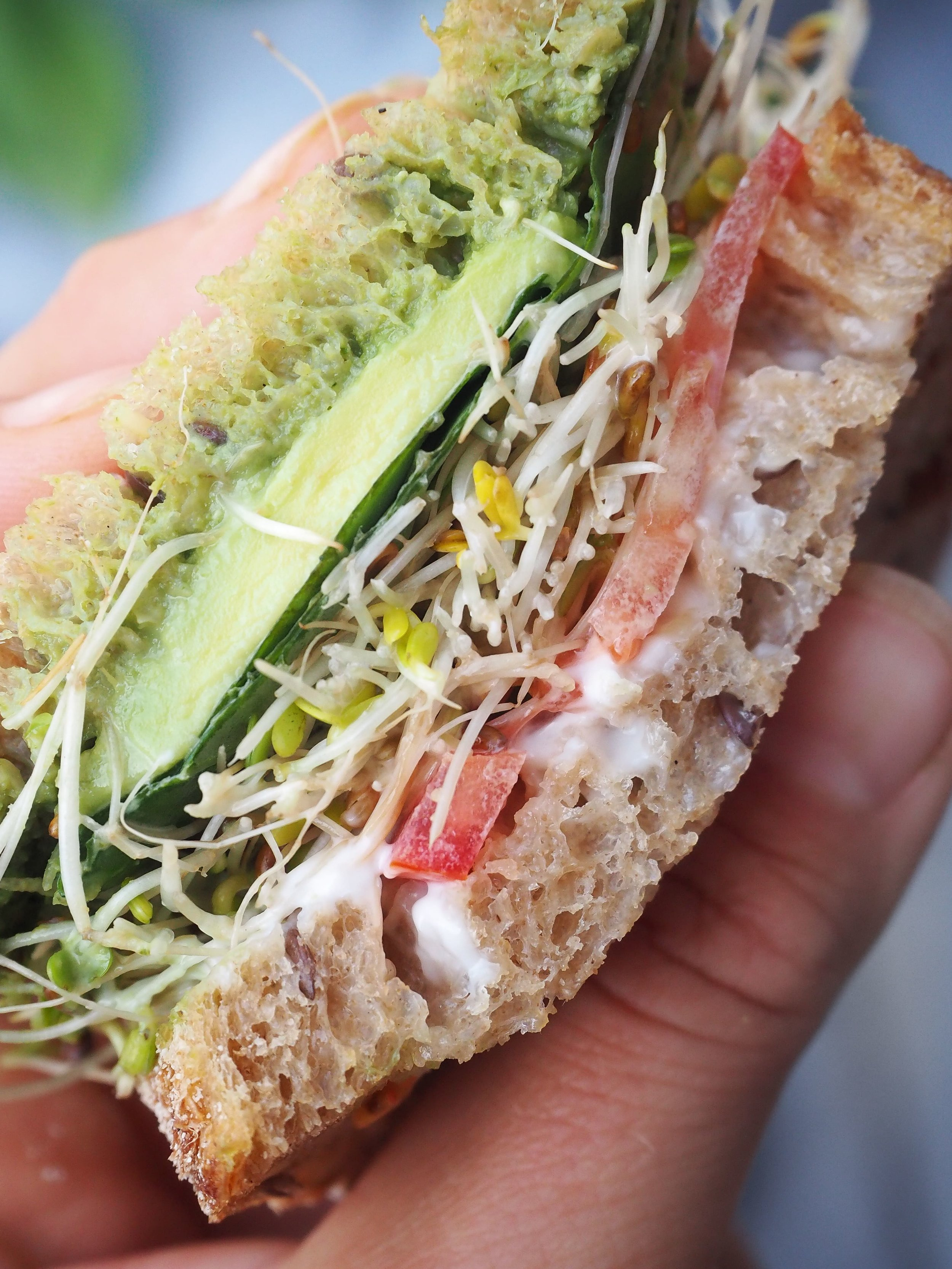 Vegan-Avocado-Pesto-Sandwich-3.jpg