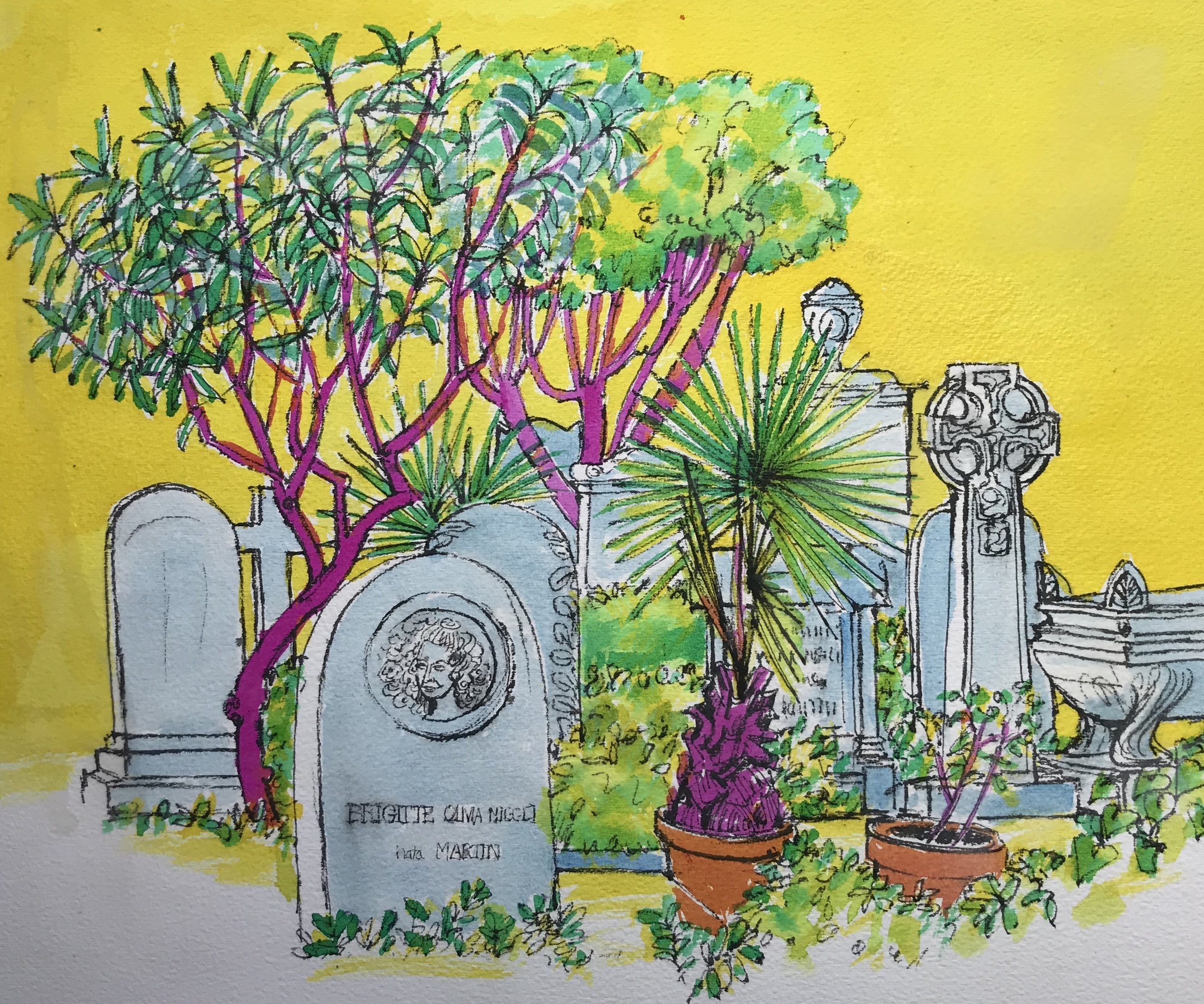 The Pink Trees Non Catholic Cemetery of Rome.(pen, ink and coloured inks) 39 x 45cm £60 framed