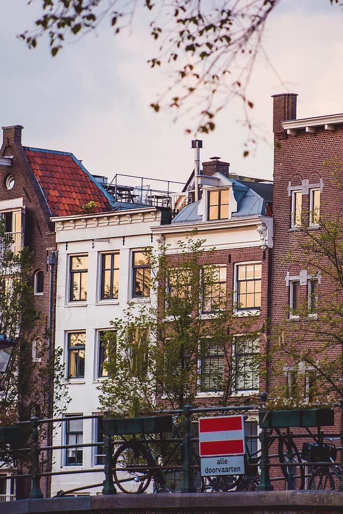 celia-city-photographer-amsterdam-netherlands-taylor-content.jpg