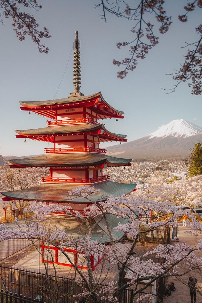 eriko-landscape-photographer-kanagawa-japan-taylor-content.jpg