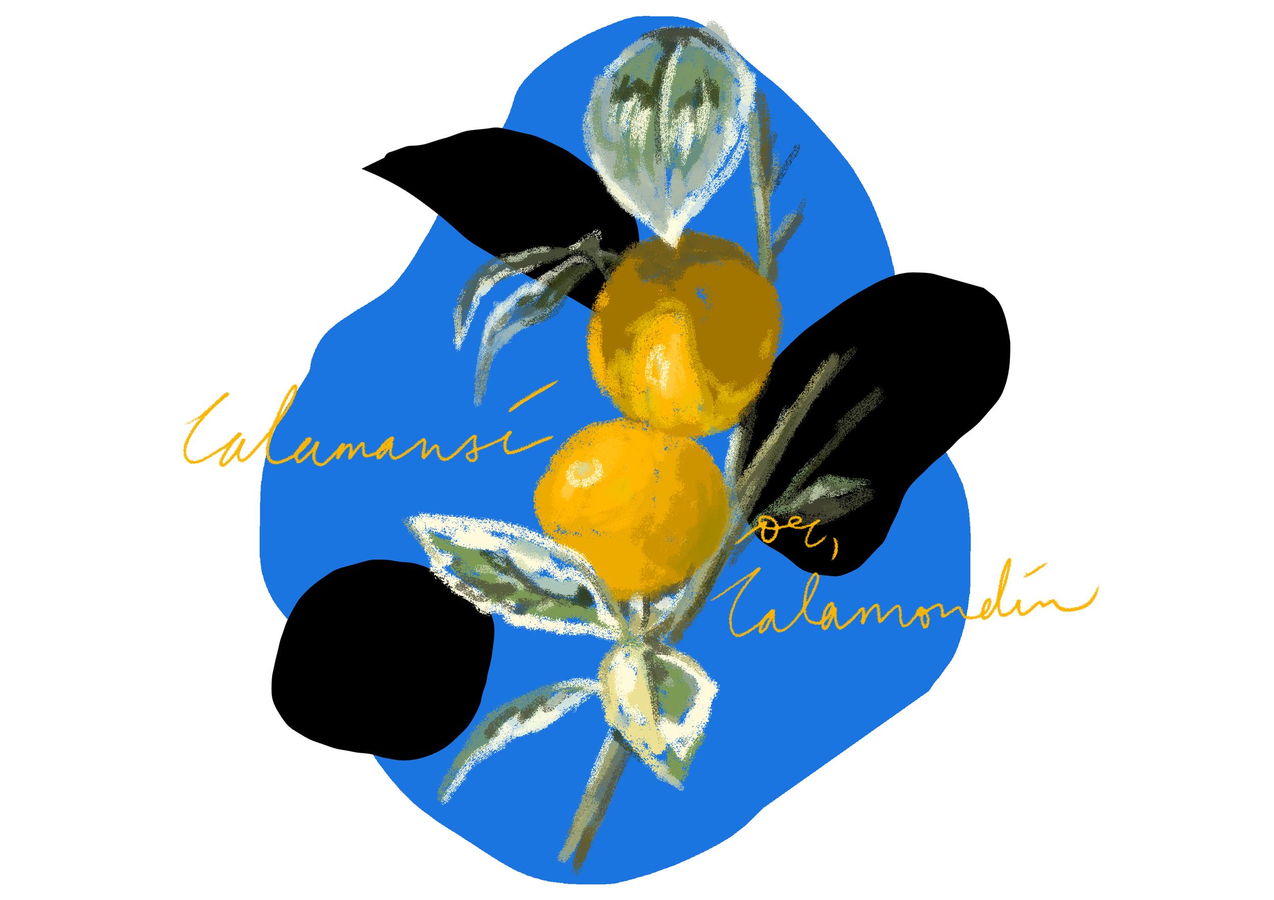 Citrus_1.png