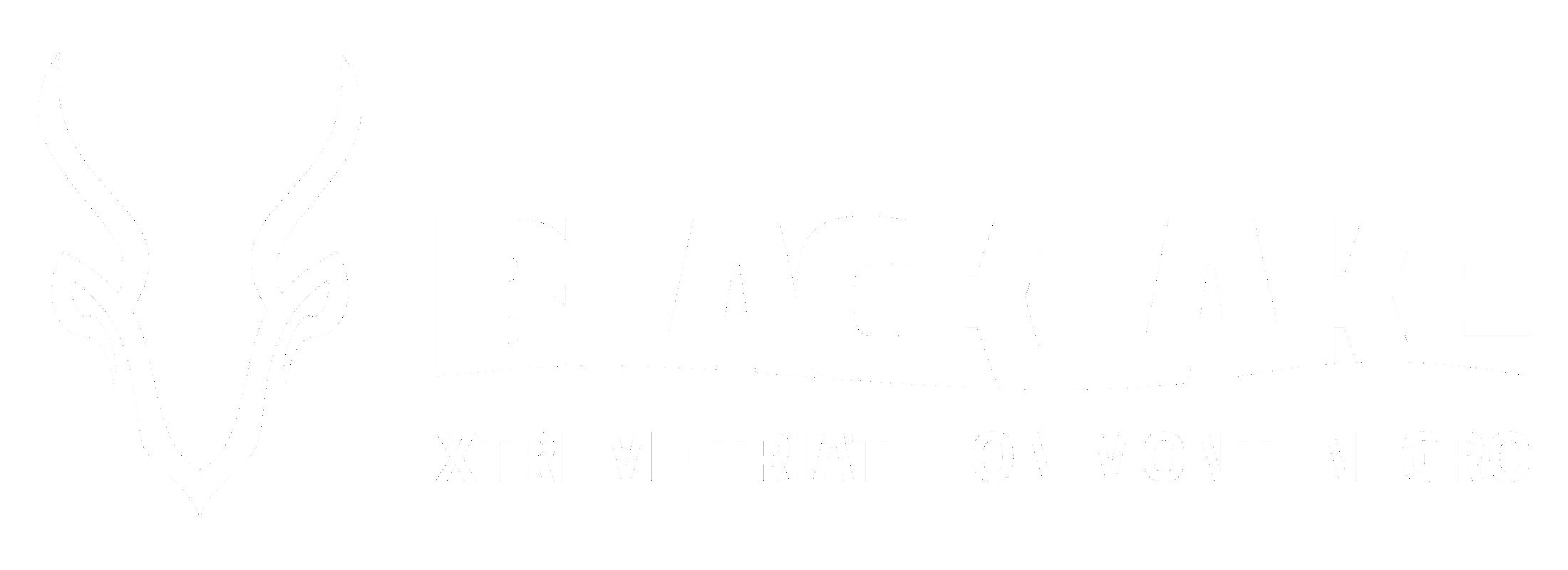 BLACKLAKE horizontalni white.png