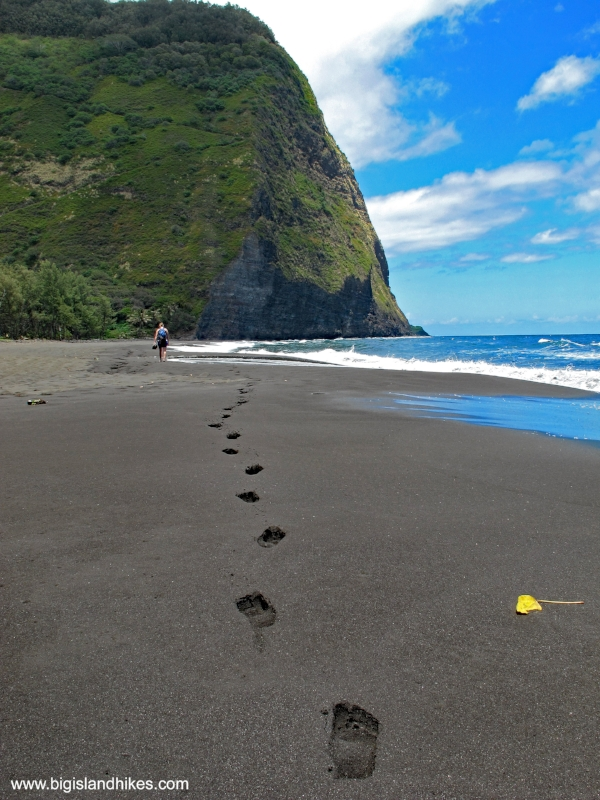 waipio valley beach.jpg