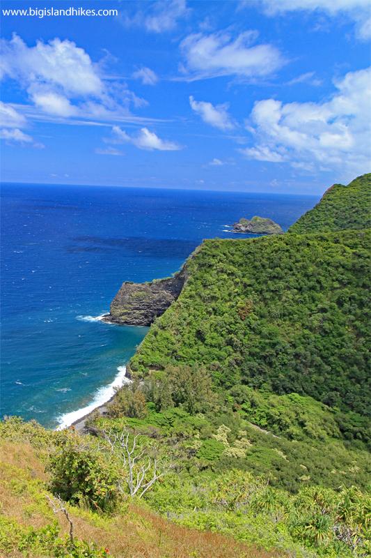 Honokāne Nui Valley Overlook