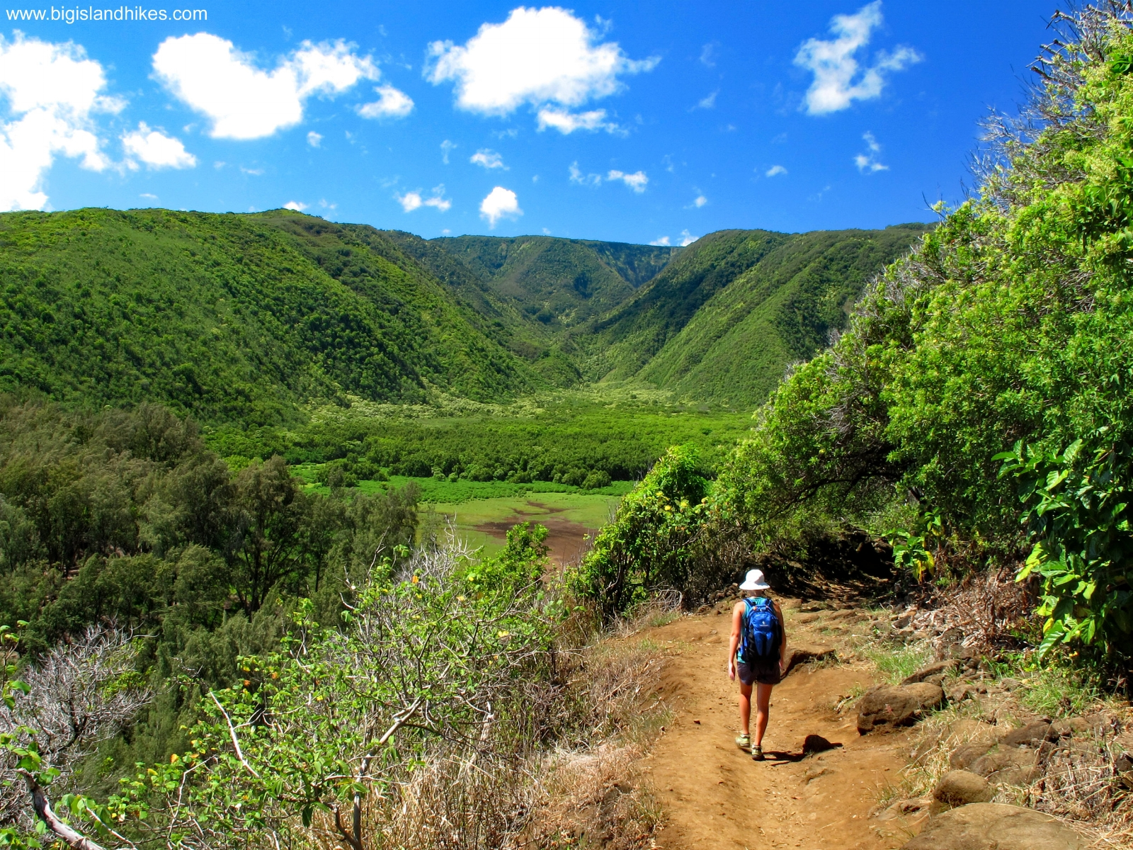 Hiking down to Pololū Valley