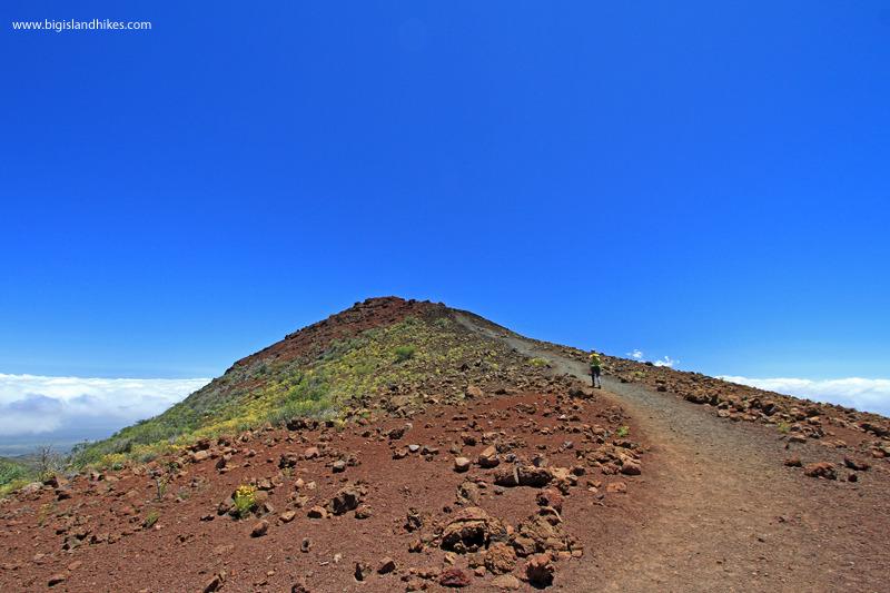 Climbing Pu'u Kalepeamoa