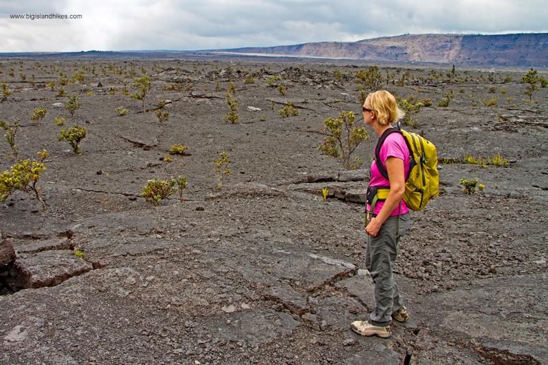 End of the Halema'uma'u Trail