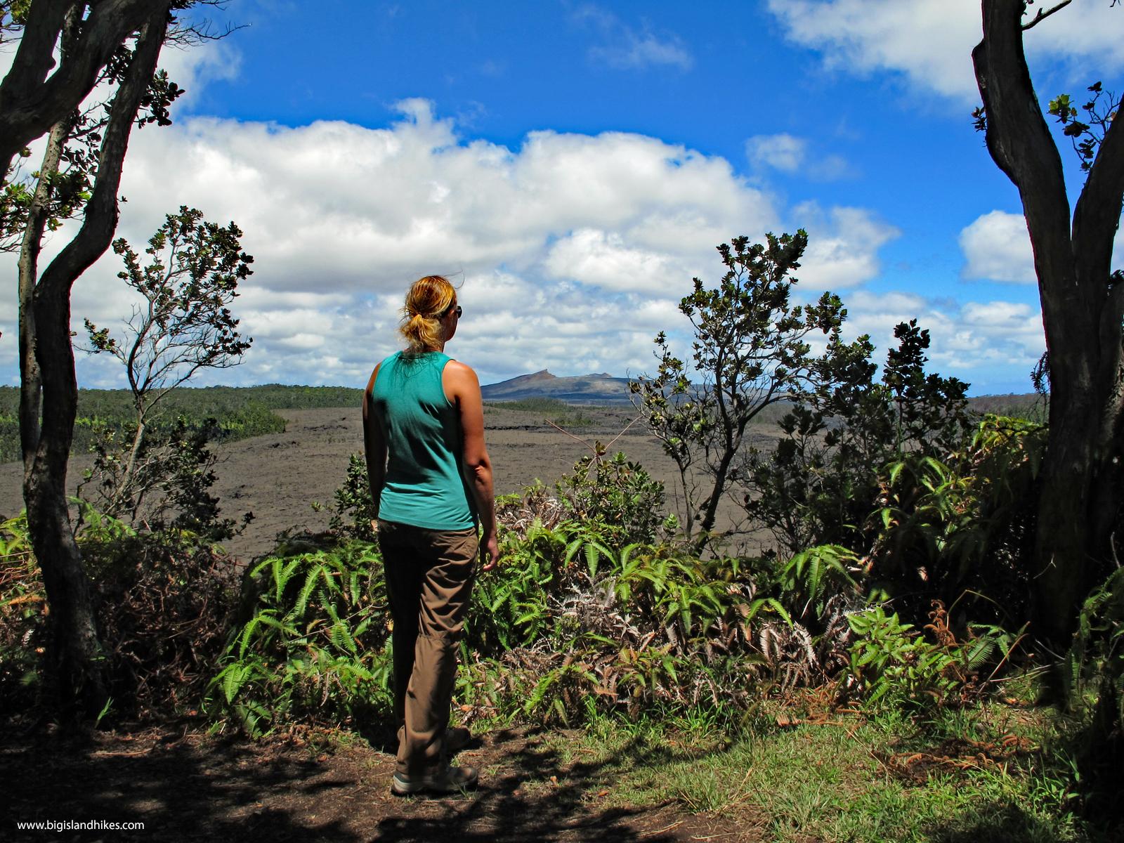 The view from the top of Pu'u Huluhulu