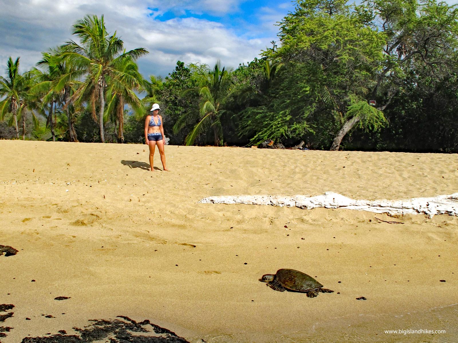 Kapalaoa Beach